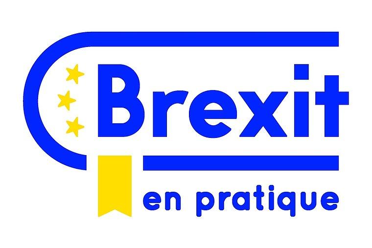Brexit en pratique, la plateforme du Gouvernement pour répondre à vos (...)  - France in the United Kingdom - La France au Royaume-Uni